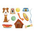collection pet shop icons dog leash pet care vector image