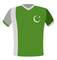 flag t-shirt of pakistan vector image