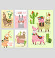 llama ballamas cute alpaca and cacti wild peru vector image