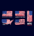 american flag grunge patriotic style print with vector image