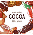 cocoa beans hand drawn frame background vector image vector image