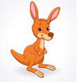 cute kangaroo joey cartoon character vector image vector image