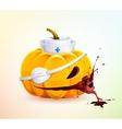 Doc pumpkins vector image vector image