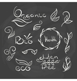 Organic food tags and elements vector image