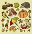 set autumn symbols vector image