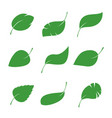 set of isalated green leaves vector image
