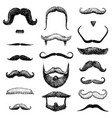 set of mustache and funny beard of men hipster vector image vector image