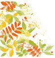 tempalte with leaves silhouettes vector image vector image