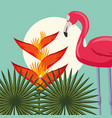 tropical leaves nature vector image vector image