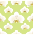 White orchid flowers on a background of pistachio vector image