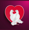 white pigeons couple looks at each other and heart vector image vector image