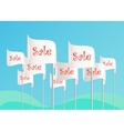 Word Sale on flags vector image