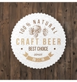 beer emblem with hand drawn hop brunch vector image vector image