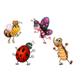 Different kind of insects vector image