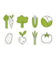 fresh vegetables icons set cabbage beet tomato vector image vector image
