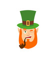 leprechaun winks dwarf with red beard happy emoji vector image vector image