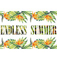 slogan endless summer jungle frame vector image vector image