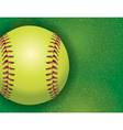 softball on grass textured field vector image vector image