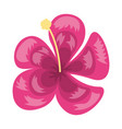 tropical exotic flower decoration icon vector image vector image