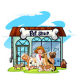 Vet and many pets at pet shop vector image vector image