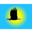 bald eagle vector image