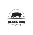 black hog logo vector image