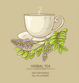 cup of licorice tea vector image vector image