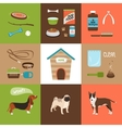 Dogs and dog accessories vector image