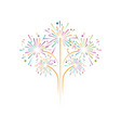 firework icon vector image vector image