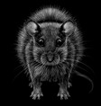 mouse artistic graphic black and white portrait vector image vector image