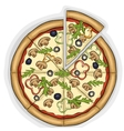 Pizza with mushrooms color picture vector image