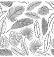 black and white tropical leaves and feathers vector image vector image