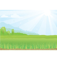 green field with sunshine rays vector image