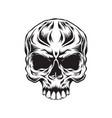 head skull vector image vector image