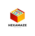 hexagon square maze logo labyrinth logotype vector image