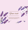 Lavender natural cosmetics banner vector image vector image