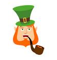 leprechaun happy dwarf with red beard merry emoji vector image vector image