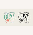 olive branch logo oil badge organic vegetarian vector image vector image