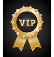 VIP design exclusive and premium concept vector image vector image