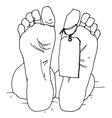 dead man vector image