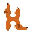 letter h is dog pet font dachshund alphabet vector image vector image