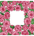 peonies squared frame vector image vector image
