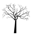 tree autumn isolated icon vector image vector image