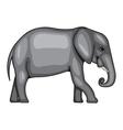 a big elephant vector image vector image