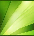 abstract background soft blurred green background vector image vector image