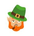 leprechaun sad dwarf with red beard sorrowful vector image