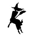 silhouette halloween witch vector image vector image