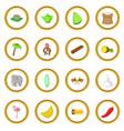 sri lanka travel icons circle vector image vector image