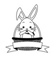 cute surprise rabbit in the basket vector image vector image