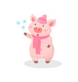 funny pig wearing knitted hat and scarf cute vector image